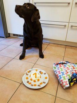 Happy Birthday E-Wurf